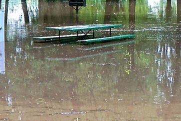 Water surrounds this picnic table in Oakland's park after a stormy morning. Photo Credit/Denise Gilliland, Editor and Chief, Kat Country Hub.