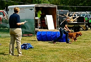 Megan Olson's dog goes through the course with enthusiasm! Photo Credit/Denise Gilliland, Editor and Chief, Kat Country Hub.