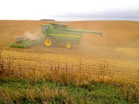 Back to work, combining away! Photo courtesy of Justin Beck.