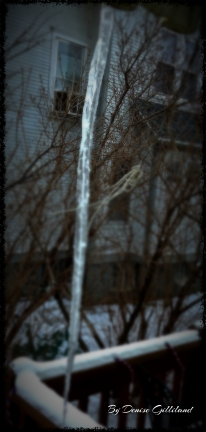 It is colder than cold today! Looks like this icicle will be around a bit longer! Photo credit/Denise Gilliland, Editor and Chief, Kat Country Hub.